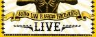 surf live 444